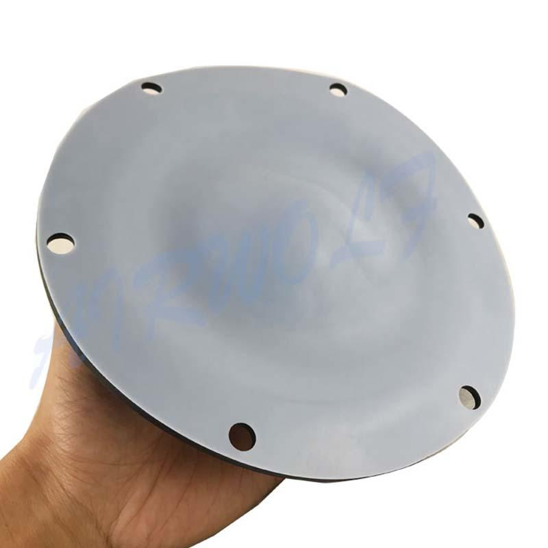 Diaphragm Valve Repair Kit for Pneumatic diaphragm pump  PTFE  Santoprene Nitrile 12503167  Black and white